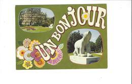 DIJON  UN BONJOUR  MULTIVUES HOTEL DE LA CLOCHE  L OURS BLANC ****    RARE    A SAISIR **** - Dijon