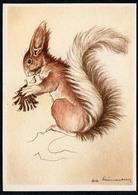C1408 - TOP Eichhörnchen Squirrel écureuil Ardilla - Künstlerkarte - Birthday