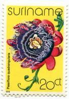 Lote S1, Suriname, 1978, Sello, Stamp, 5 V, Orquidea, Orchid, Flower - Surinam