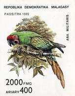 Lote Hu1, Hungria, 1992, HF, SS, Ara Militaris, Ave, Bird - Surinam