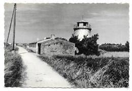 Cpsm: 17 ILE DE RE - ARS EN RE (ar. La Rochelle) Moulin Bertin  N° 33 - Ile De Ré