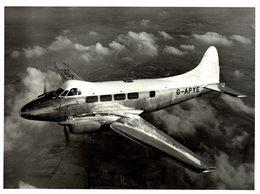 De Havilland DH DOVE    21 * 16 CM - Aviación