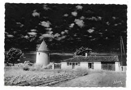 Cpsm: 17  ILE DE RE - ARS EN RE (ar. La Rochelle) Moulin De La Boire  N° 24  (Plan Rare) - Ile De Ré