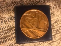 1982 Medaglia Grande Modulo In Bronzo Smaltata Regata Storica Di San Ranieri Pisa Amalfi Genova Venezia - Bronzes