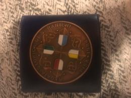 1984 Medaglia Grande Modulo In Bronzo Qsmaltata Regata Storica Di San Ranieri Pisa Amalfi Genova Venezia - Bronzes