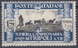TRIPOLITANIA - 1929 - Yvert 67 Nuovo MH Di Seconda Scelta (una Piega A Sinistra), Come Da Immagine. - Tripolitania