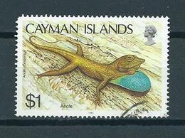 1987 Kaaiman Eilanden $1.00 Leguaan,reptiles Used/gebruikt/oblitere - Kaaiman Eilanden