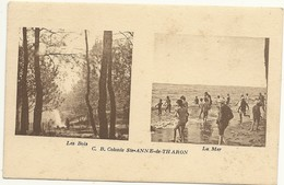 44  THARON   COLONIE  STE  ANNE  DE  THARON    LES  BOIS  ---  LA  MER - Tharon-Plage