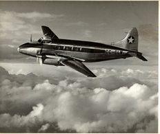 De Havilland DH DOVE    Linea Aeria Nacional De Chile  25 * 19 CM - Aviación