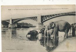 Elephants Se Baignant Dans La Riviere En France . Cirque Mac Caddon . Petit Defaut Coin Inf. Gauche - Elefantes