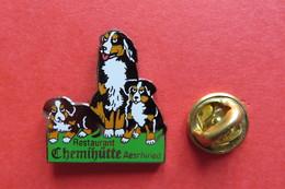 Pin's,Animaux,BOUVIER BERNOIS,Bernese Mountain Dog,Berner Sennenhund,Chien,Hund,Restaurant Chemihütte Aeschiried - Animaux