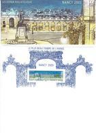 FRANCE  2006 Bloc Souvenir N°14le Plus Beau Timbre De L'année Nancy 2005 - Souvenir Blocks