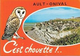 CHOUETTE - 80 - AULT-ONIVAL C'EST CHOUETTE - 1 VUE - CPM - PAS ÉCRITE - - Oiseaux