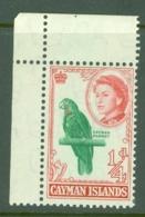 Cayman Islands: 1962/64   QE II - Pictorial   SG165a   ¼d  Emerald & Rose    MNH - Iles Caïmans
