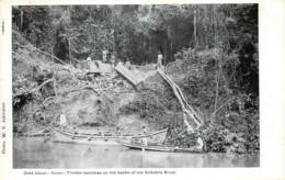 Gold Coast - Ghana - AXIM - Timber Business On The Banks Of The Ankobra River - - Ghana - Gold Coast