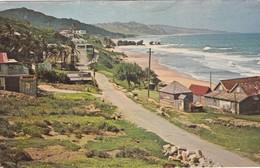 CARTOLINA - BARBADOS - BATHSHEBA , BARBADOS, WEST INDIES - Barbados