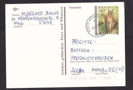Austria: Stationery Postcard, 1999, Endangered Animal, Lynx (traces Of Use) - 1945-.... 2de Republiek