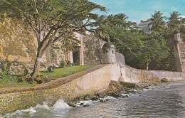 CARTOLINA - PUERTO RICO - SAN JUAN , PUERTO RICO - Puerto Rico