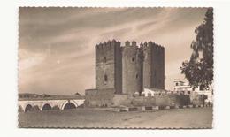 ESPAGNE CORDOBA TORRE DE CALAHORRA - Córdoba