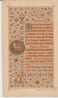 IMAGE RELIGIEUSE - SOUVENIR DE LA PREMIERE COMMUNION DE DENYSE HENRY - COUVENT DE L'ASSOMPTION - NICE - 1895 - 812 - Images Religieuses