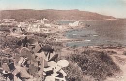 Algérie - Constantine - La Calle : La Ville ; La Presqu'île Et Sa Baie & Entrée Du Port - 2 CPSM Neuves - Constantine