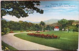 Jamaica Hope Garden - Postcards