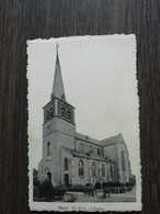 Ranst De Kerk - Ranst