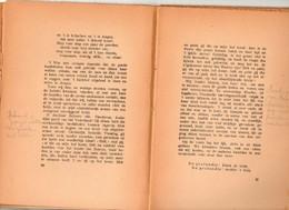 Guido Gezelle Kerkhofblommen Poezie Gedichten  Schooluitgave 55 Blz    Boek - Oud