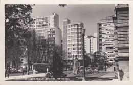 CARTOLINA - POSTCARD - BRASILE -São PAULO - AVENIDA YPIRANGA - São Paulo