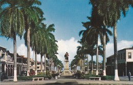 CARTOLINA - POSTCARD - PANAMA - AVENIDA CENTRAL UN PASEO DE BELLAS PALMAS - Panama