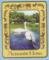 UKRAINE / Flexible Magnet / Fauna. Birds Swans  Reserve Askania-Nova. - Animaux & Faune