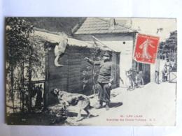 CPA (93) Seine Saint Denis - LES LILAS - Exercices Des Chiens Policiers (dressage Chiens) - Les Lilas