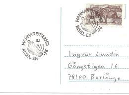 1976 Chzmpionnats D'Europe De Luge:Hammarstrand (Suède) - Hiver