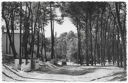 17)    RONCE  Les  BAINS  -  La Cèppe - Sonstige Gemeinden