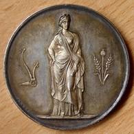 Médaille Comice Agricole De Jonzac / Charente Inférieur. - Professionnels / De Société