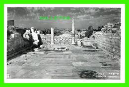CÉSARÉE DE PALESTINE, ISRAEL - EXCAVATIONS - VRAI CARTE-PHOTO - - Israel