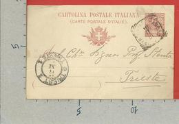 CARTOLINA POSTALE VG ITALIA - Tipo Floreale V. Emanuele III - MARIO STENTA 1904 - S. CP30 MILL. 04 - 1900-44 Vittorio Emanuele III