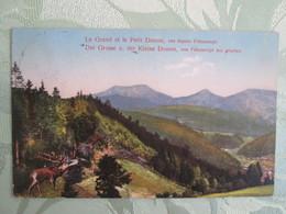 Le Petit Donon . Vue Depuis Freconrupt . Cerf - France