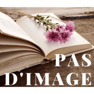 Récits D Un Chasseur, Ivan Tourgueneff, Albin Michel - 1926 - Livres, BD, Revues