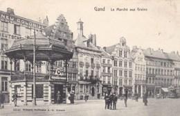 Gent, Le Marché Aux Grains (pk56449) - Gent