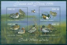 IRLANDE BF N° 23 N Xx Canards TB Cote:6.50 €. - Ducks