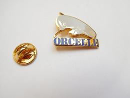 Superbe Pin's En EGF , Dauphin Orcelle , Dauphin De L' Irrawaddy , N° 382 - Animales