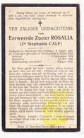 DP EZ Stephanie Calf - Zr. Rosalia ° Houtem Veurne 1862 † Klooster Bekegem ? 1920 / Eernegem Ichtegem - Devotion Images