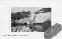 R169909 Kereru Whakarewarewa. New Zealand. Novelty Series. No. 57 - Cartes Postales
