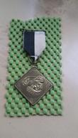 .medal - Medaille - Medaille :  Zwarte Piet , Wandelkring Haaksbergen - Unclassified
