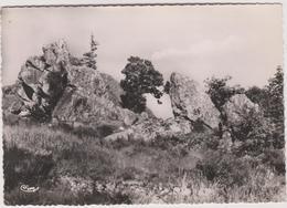 63  Saint Remy Sur Durolle   Les Rochers Du Calvaire - France