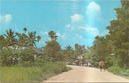 Indochine Village Laotien Dans Les Environs De Vientiane - Cartes Postales