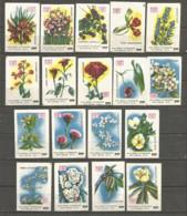 Russia USSR 1987 Year , 18 Matchbox Labels  Flowers - Boites D'allumettes - Etiquettes