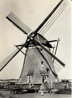 Zoeterwoude, Westbroekpolder, Zuidbuurt, Poldermolen, Windmills, Real Photo - Watermolens