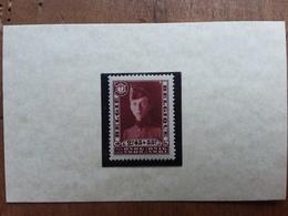 BELGIO - Expo Filatelica Pro Invalidi - N. 325 Nuovo ** + Spedizione Prioritaria - 1915-1920 Alberto I